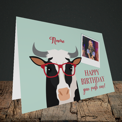 Picture of Cow, Birthday Design, Landscape Greetings Card