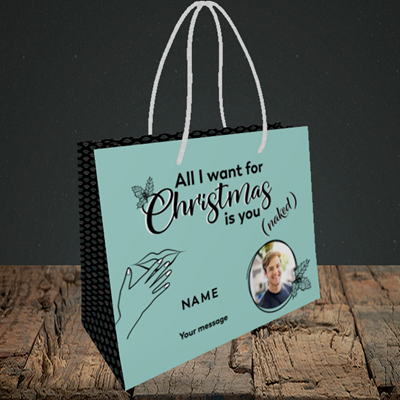 Picture of Naked Christmas, Christmas Design, Small Landscape Gift Bag